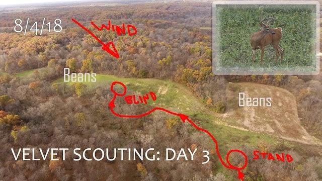 Winke's Blog: Velvet Scouting Day 3