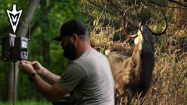 Off-Season Trail Camera Strategy | Treestands with a Purpose | Midwest Whitetail