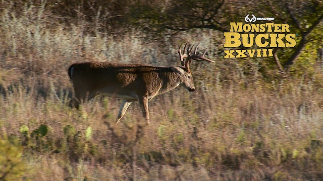 Jason Vanderbrink's Texas 11-Pointer | Realtree's Monster Bucks