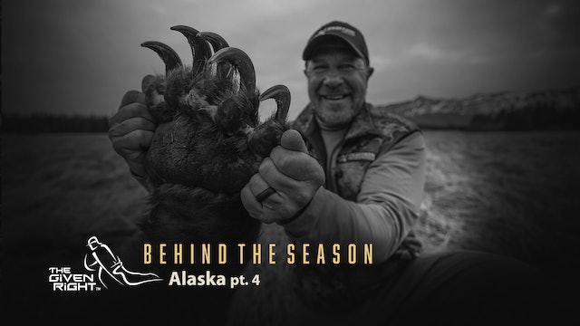 One Birthday Bear, Two Tent Squatters | Alaska Mini Series | The Given Right