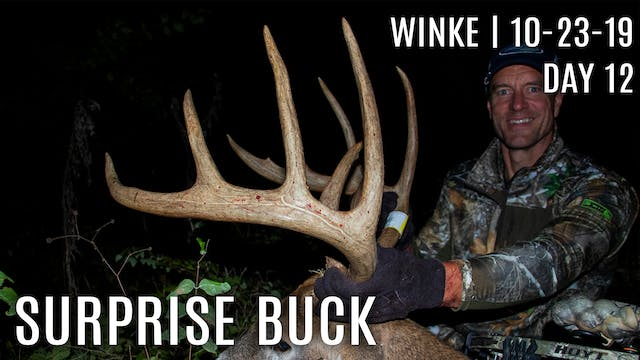 Winke Day 12: Ultimate Surprise Buck