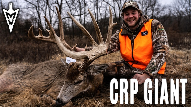 1-6-20: Huge CRP Buck, Five Encounters with Marino | Midwest Whitetail