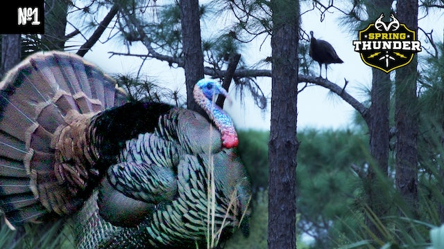 An Opening-Day Osceola | Southern Turkey Hunting At Its Finest | Spring Thunder