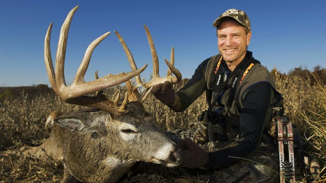 Midwest Whitetail Daily - Winke