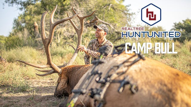 To Kill a Camp Bull | New Mexico Elk ...