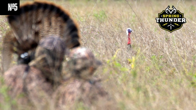 Hunting Stubborn Osceola Turkeys | Turkey Hunting in the Jungle | Spring Thunder
