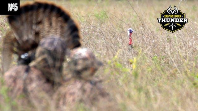 Hunting Stubborn Osceola Turkeys | Tu...