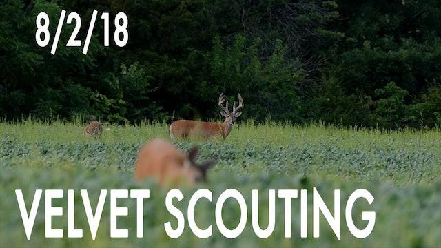 Winke's Blog: Velvet Scouting Day 1