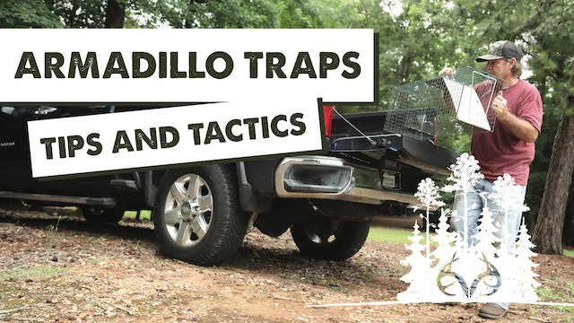 Armadillos Destroy the Yard | Using Live Traps to Catch Pests | Pay Dirt
