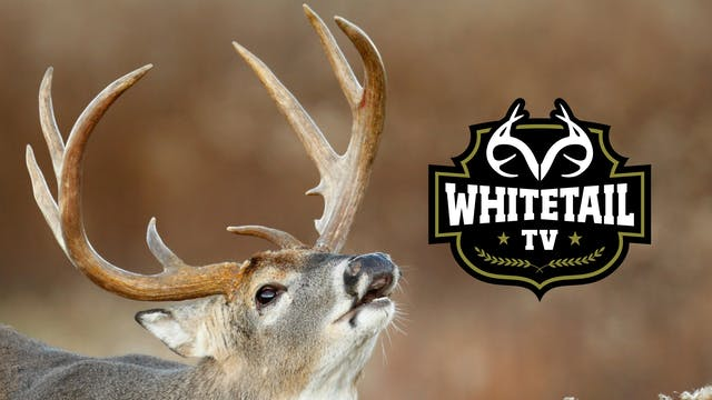 Whitetail TV - 2019 Premiere