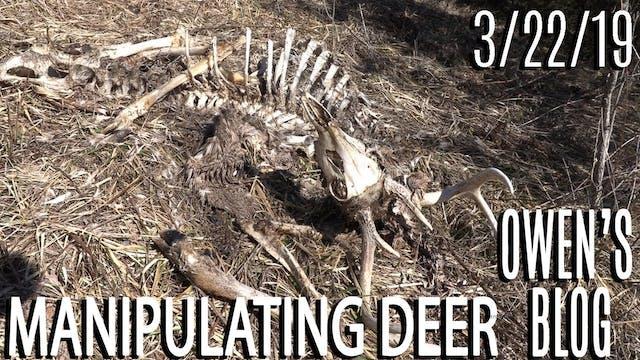 Owen's Blog: Manipulate Deer Movement...