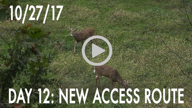 Winke Day 12: New Access Route
