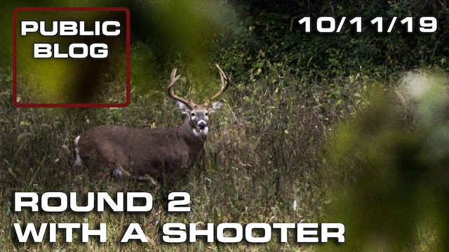 Public Land Blog | Round Two with a Shooter