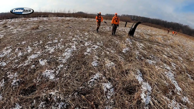 Drake's Blog: Public-Land Deer Drives | Hanging With The Hunting Public