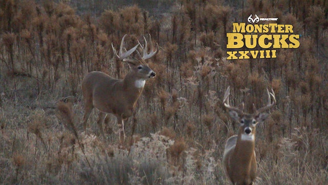 Jeff Danker's Huge Oklahoma Monster | Realtree's Monster Bucks
