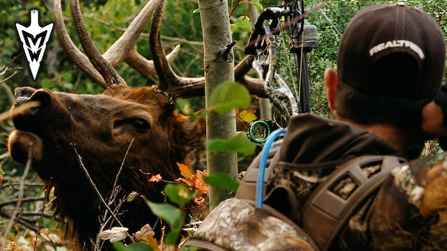 Jared Mill's First Bull Elk, Crazy-Close Encounters | Part 2 | Midwest Whitetail