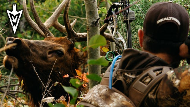 Jared Mill's First Bull Elk, Crazy-Cl...