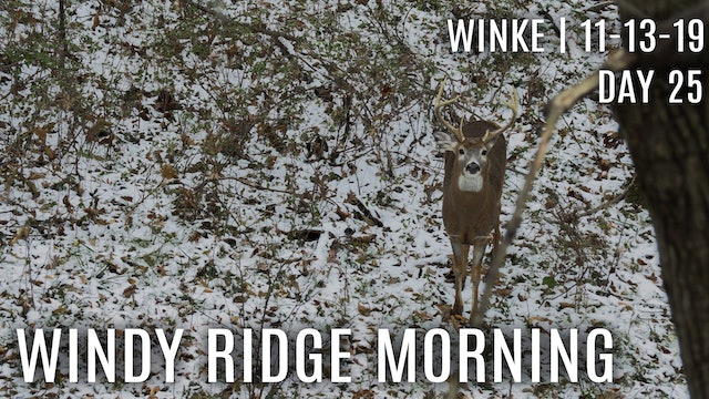 Winke Day 25: Windy Ridge Morning, Finding The Right Doe
