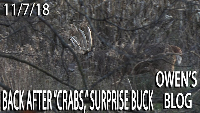 Owen's Blog: Close Call on Crabs, Surprise Buck