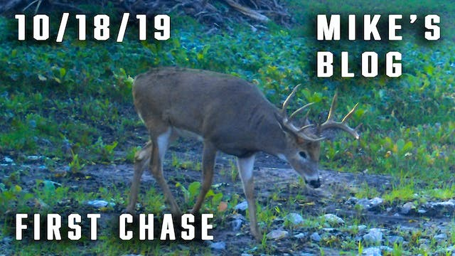 Mike's Blog: First Chase