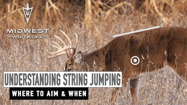 3-5-18: Finding Sheds, Understanding String Jumping | Midwest Whitetail