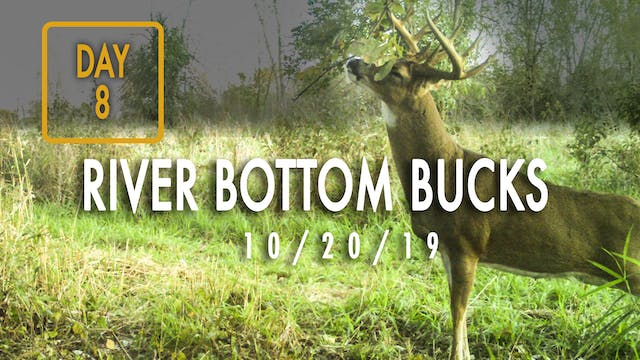 Jared Day 8: Hunting River Bottom Bucks