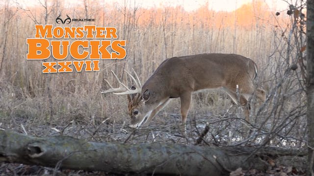 Matt Duff's Swampland Monster Buck