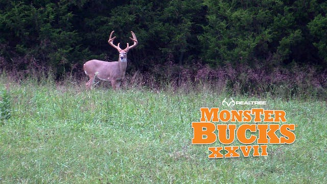Josh Honeycutt's Kentucky Velvet Monster