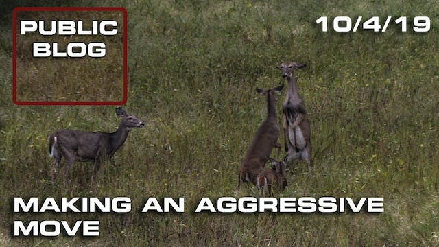 Public Land Blog | Making an Aggressi...