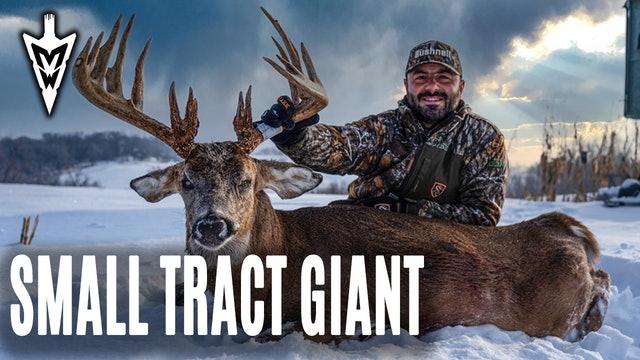 1-14-21: Mike's Monster | Intern Tags Big Public-Land Buck | Midwest Whitetail