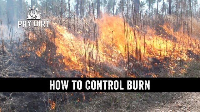 Prescribed Fire | How to Use Controll...