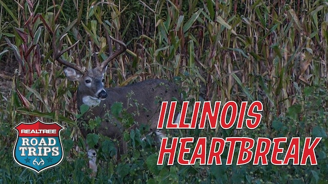Big Racks and Big Heartbreaks | Bowhunting Illinois Deer | Realtree Road Trips