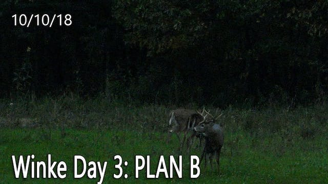 Winke Day 3: Plan B