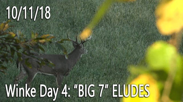 "Winke Day 4: ""Big 7"" Eludes"