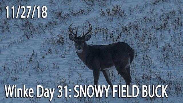 Winke Day 31: Snowy Field Bucks
