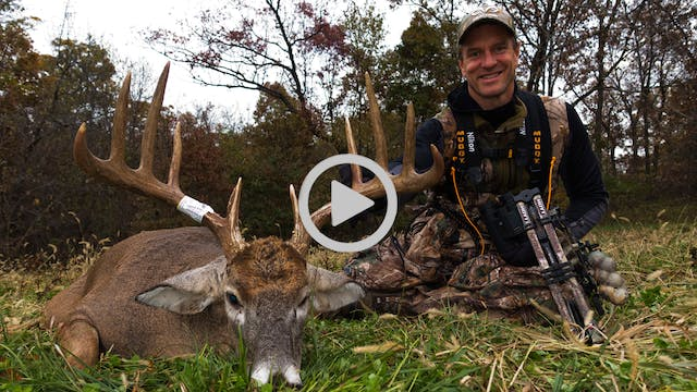 11-6-17: First Hot Doe | Midwest Whit...