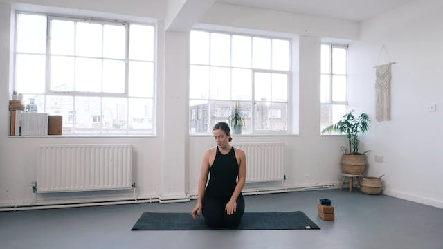 Beginner course 01 - Core poses