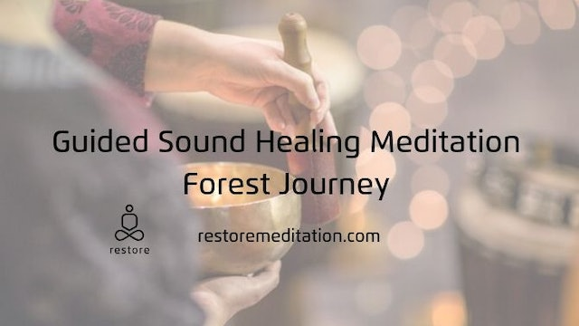 Guided Sound Healing Meditation | Forest Journey