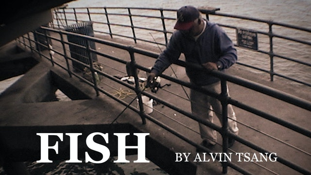 FISH by Alvin Tsang