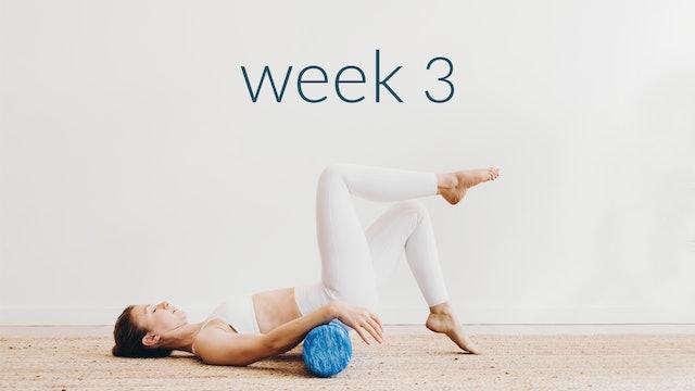 Phase 1: Week 3