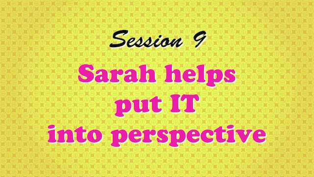 """""""Sarah Helps Put IT Into Perspective"""""""