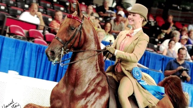 Tonya and Bob Brison - UPHA Richard E. Lavery Professional Horseman's Award