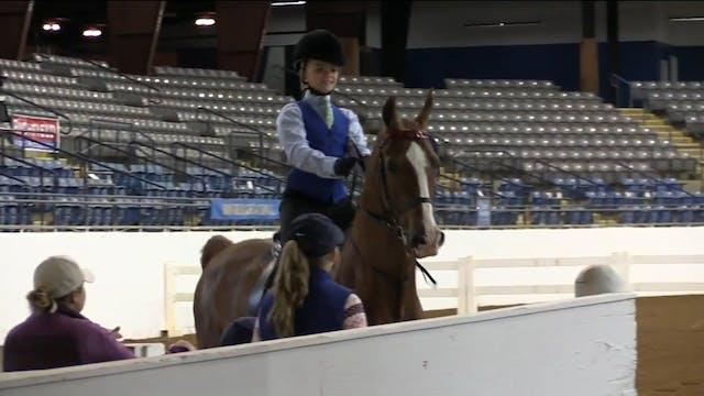 BB17 - Mikeala Serfontein - Equitation