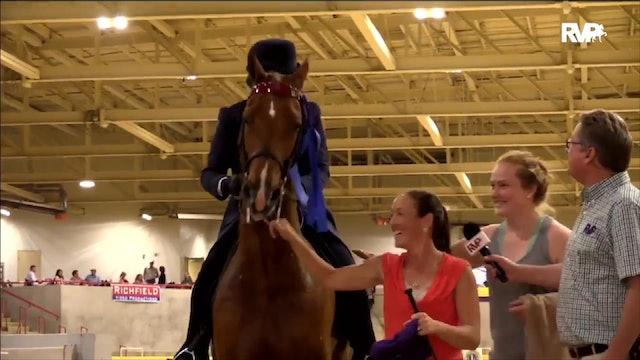 2019 Bonnie Blue National Horse Show - Saturday Evening