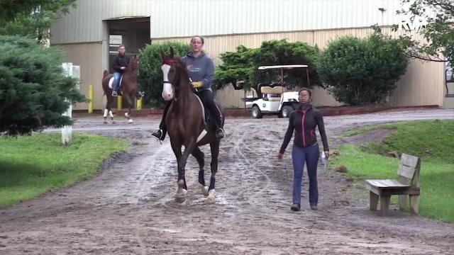 2020 Bonnie Blue Horse Show - Saturday Evening