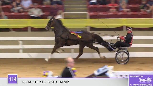 ALCB17 - Trackstar - Championship