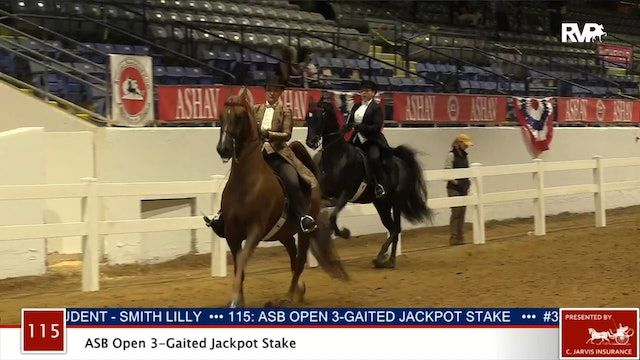 ASHAV 2020 - Class 115 ASB Open Three Gaited Jackpot Stake