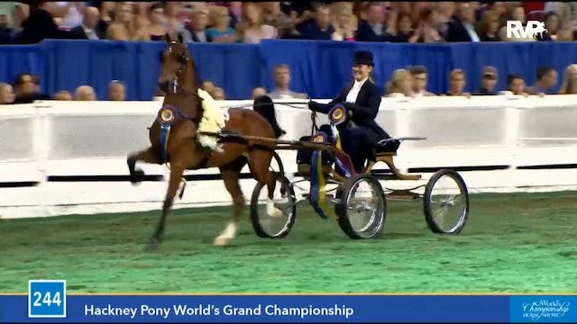 Gasparilla Charity Horse Show 2018 - Saturday Evening