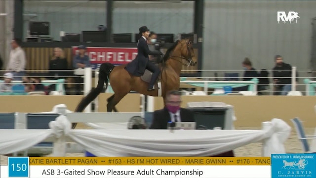 BS21 - Class 150 - ASB Three Gaited Show Pleasure Adult Championship
