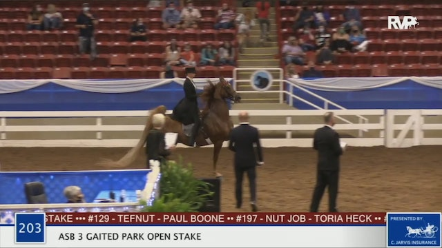 2020 BR - Class 203 ASB Three Gaited Park Open Stake
